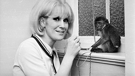 Dusty Springfield. Photo: Stan Meagher/Getty Images