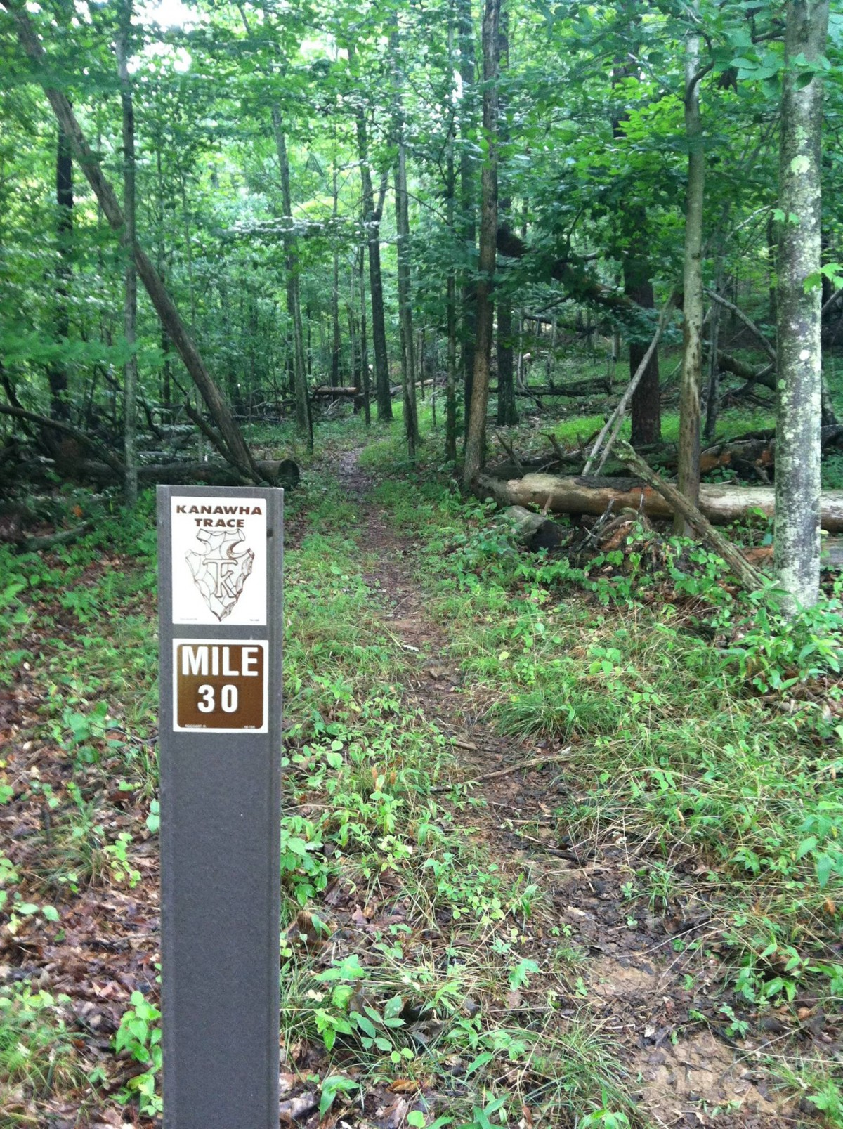 One of the many trail markers.