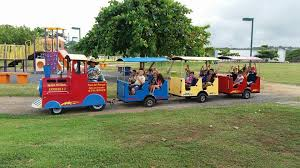 The train for the kids go around the park.