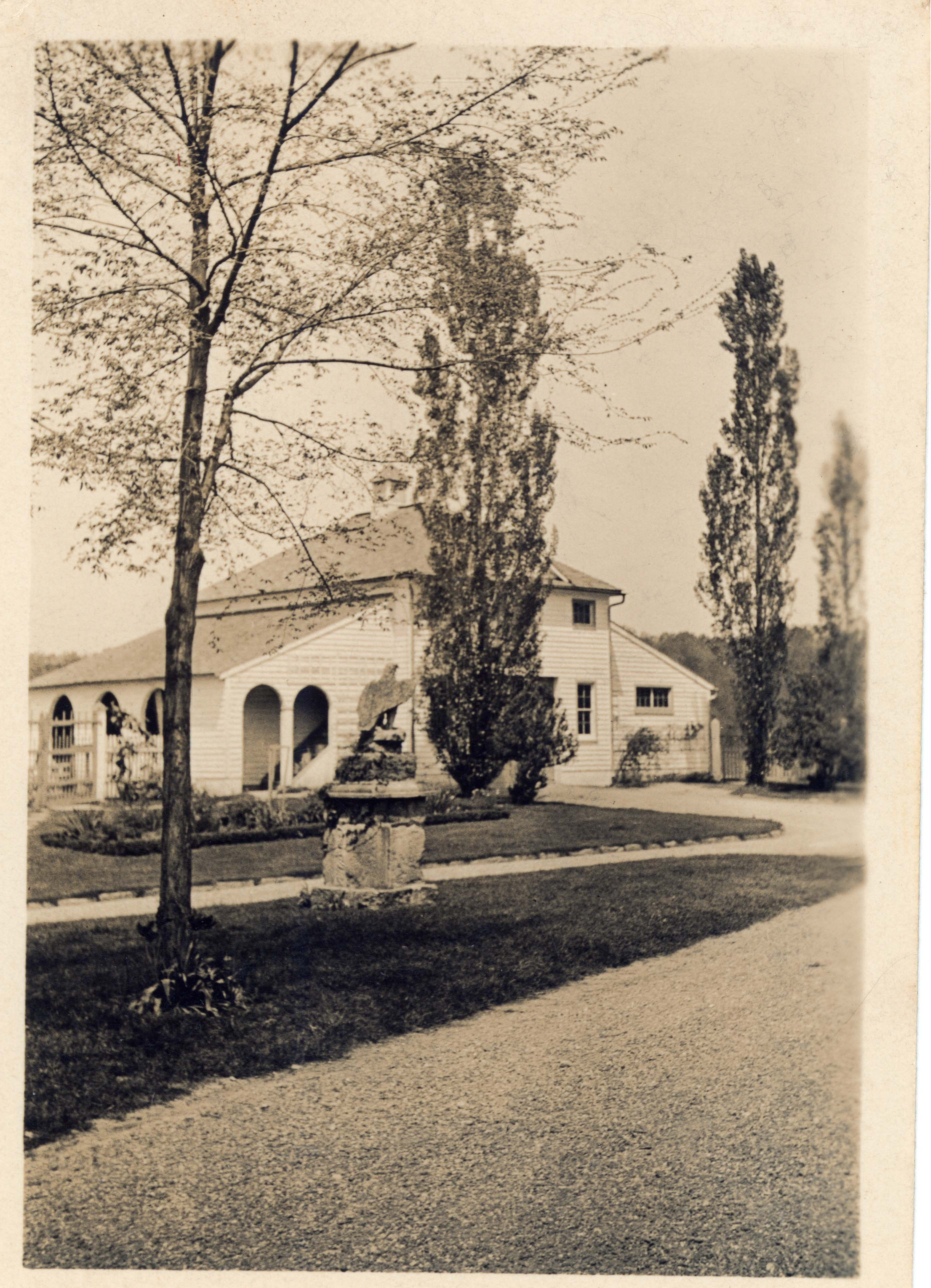 Young elm tree, eagle, and Lombardy poplars after 1923