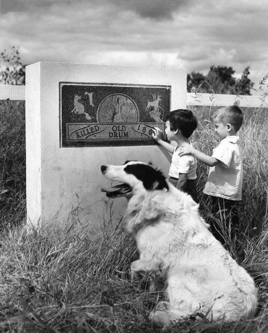Fred Ford built this monument in 1947, using money and small stones sent from dog-lovers across the globe.The monument was placed near the location where Old Drum was killed. Unfortunately, the base of the monument was vandalized.