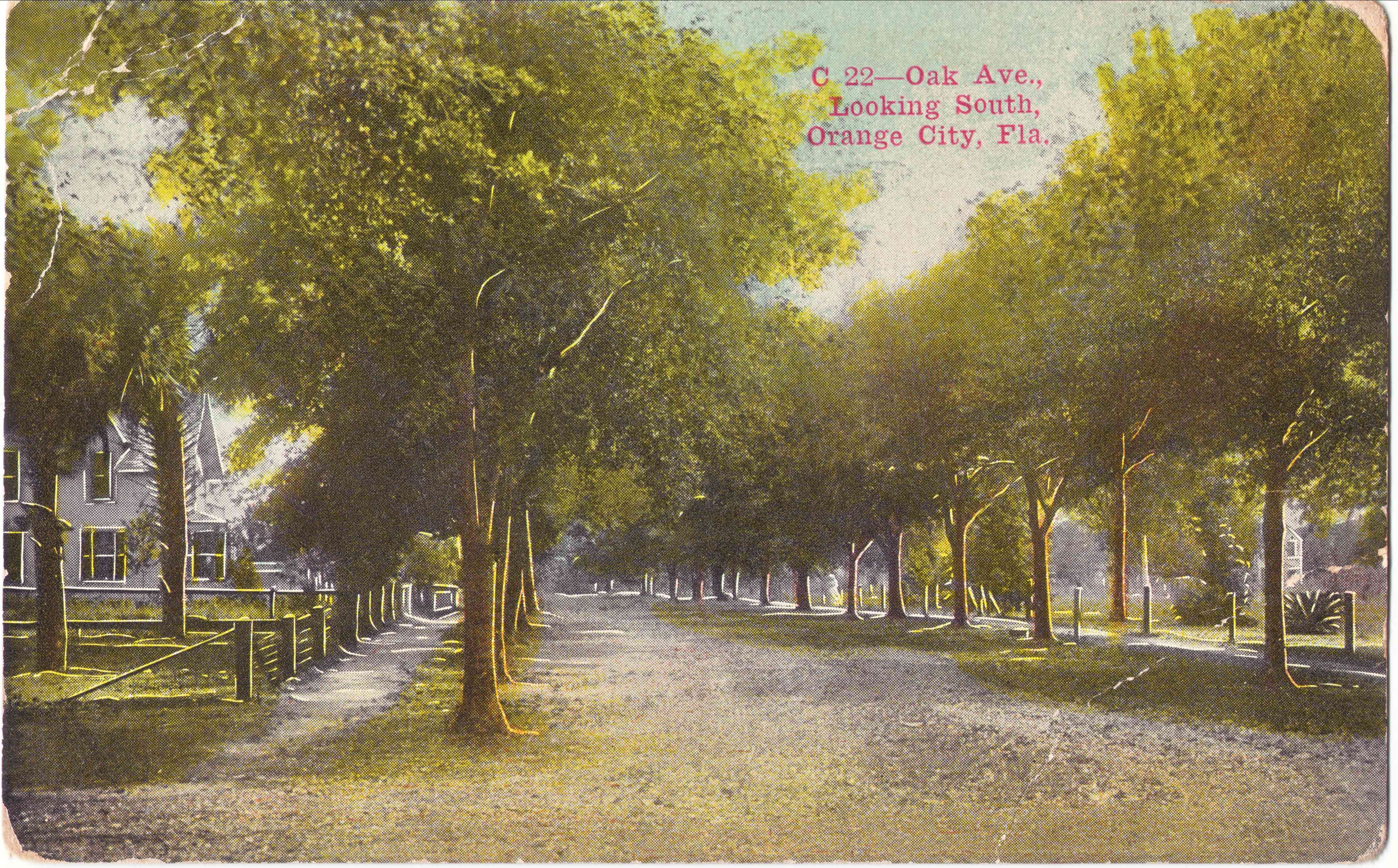 """C-22 Oak Ave., Looking South, Orange City, Fla."" Post card c.1913.  Thursby house is just visible on the left side. Courtesy postcard collection of Kimberly Reading."