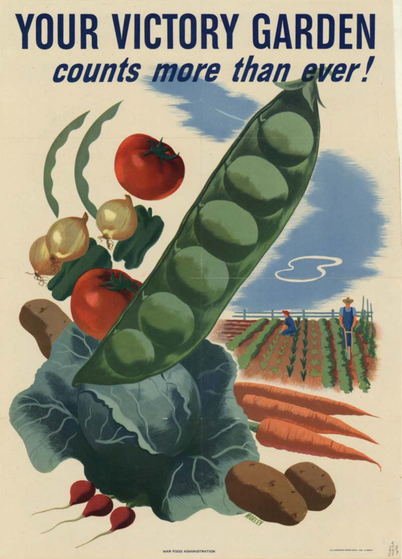 This poster was created by the United States Agriculture Department in 1944. This poster was a part of the campaign during WWII for Victory Gardens across the nation. 