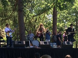 Performers at Joe's Jazz and Blues Fest in June of 2016, an example of events in Nathan Tufts Park, courtesy of the Somerville Times.
