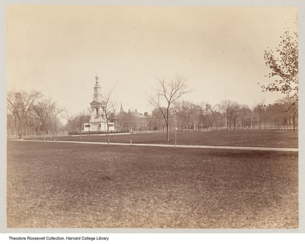This photo, taken in 1874 by William Notman & Son, shows the grassy expanse of the Common and the Soldiers' Memorial in the background. Source: HVD - Images (used with permission)