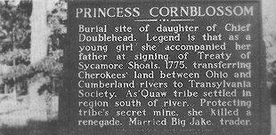 Up close and readable version of Princess Cornblossom Marker