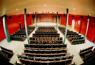 The current auditorium of Carnegie Hall where both local and famous acts perform.
