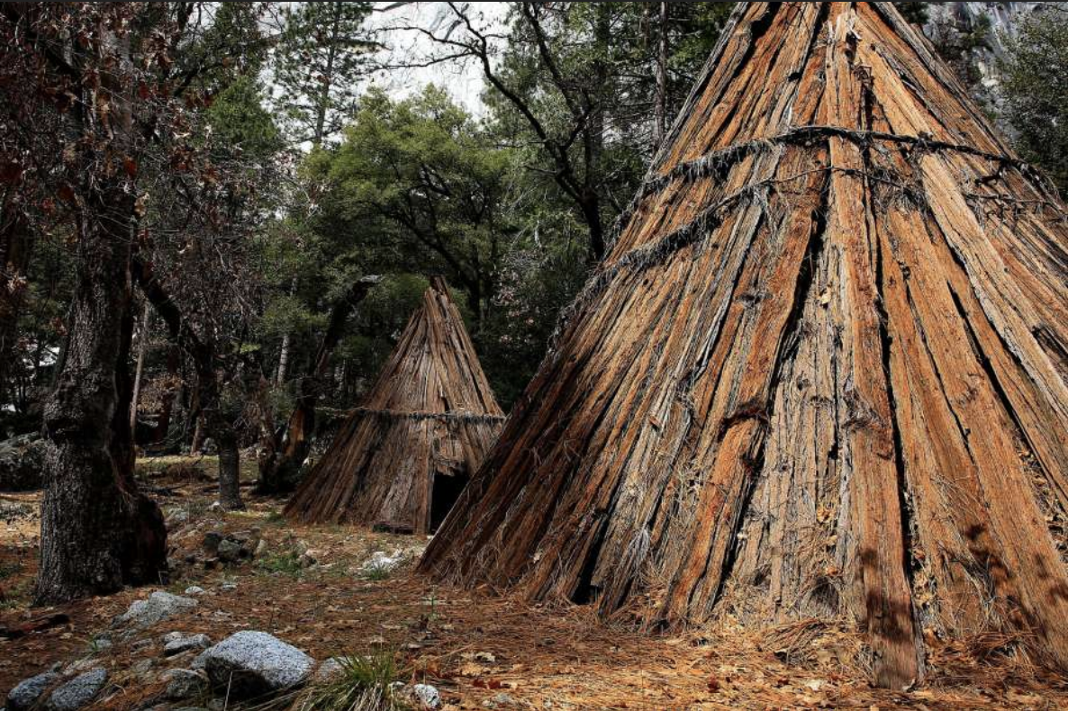 Cedar bark houses called Umachas are the first structures to be built in the new village reconstruction.