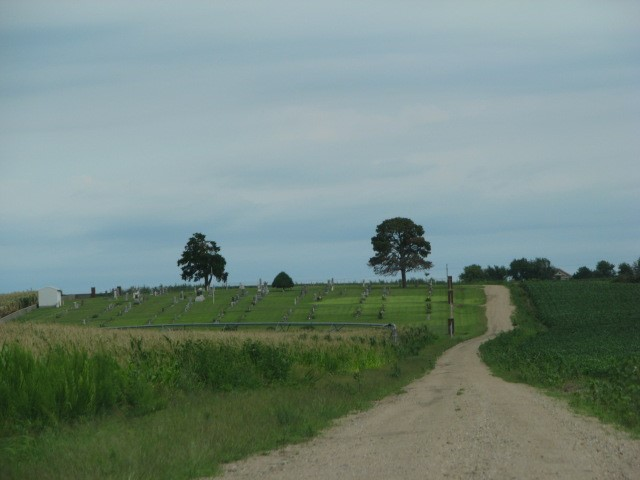 Road to Pleasant View Cemetery in Vining, Kansas. Photo by Carol Mills.