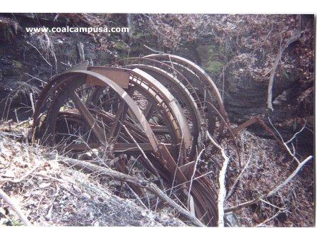 Wheel, Automotive tire, Plant, Motor vehicle