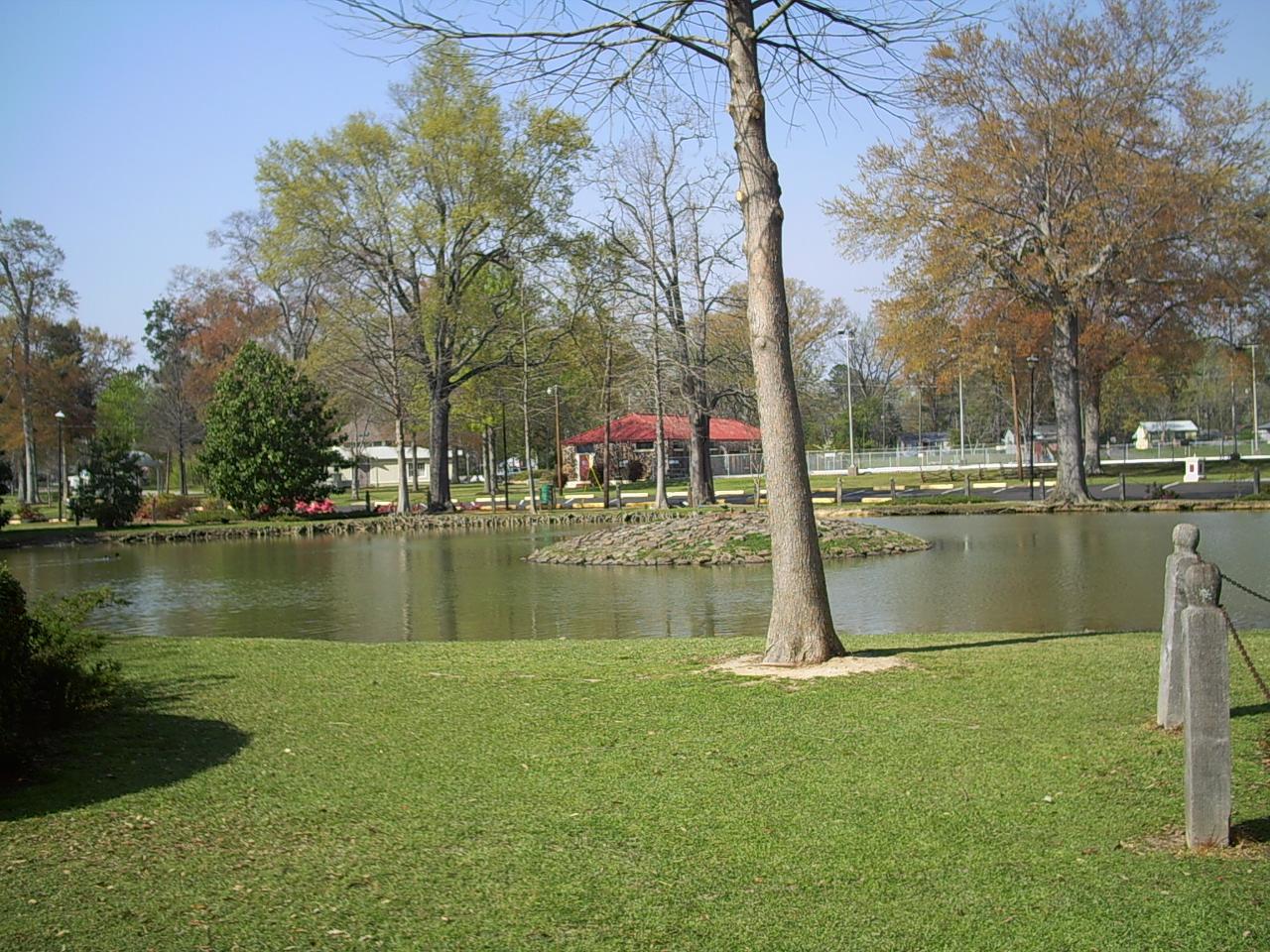 Plant, Park, Bank, Lake