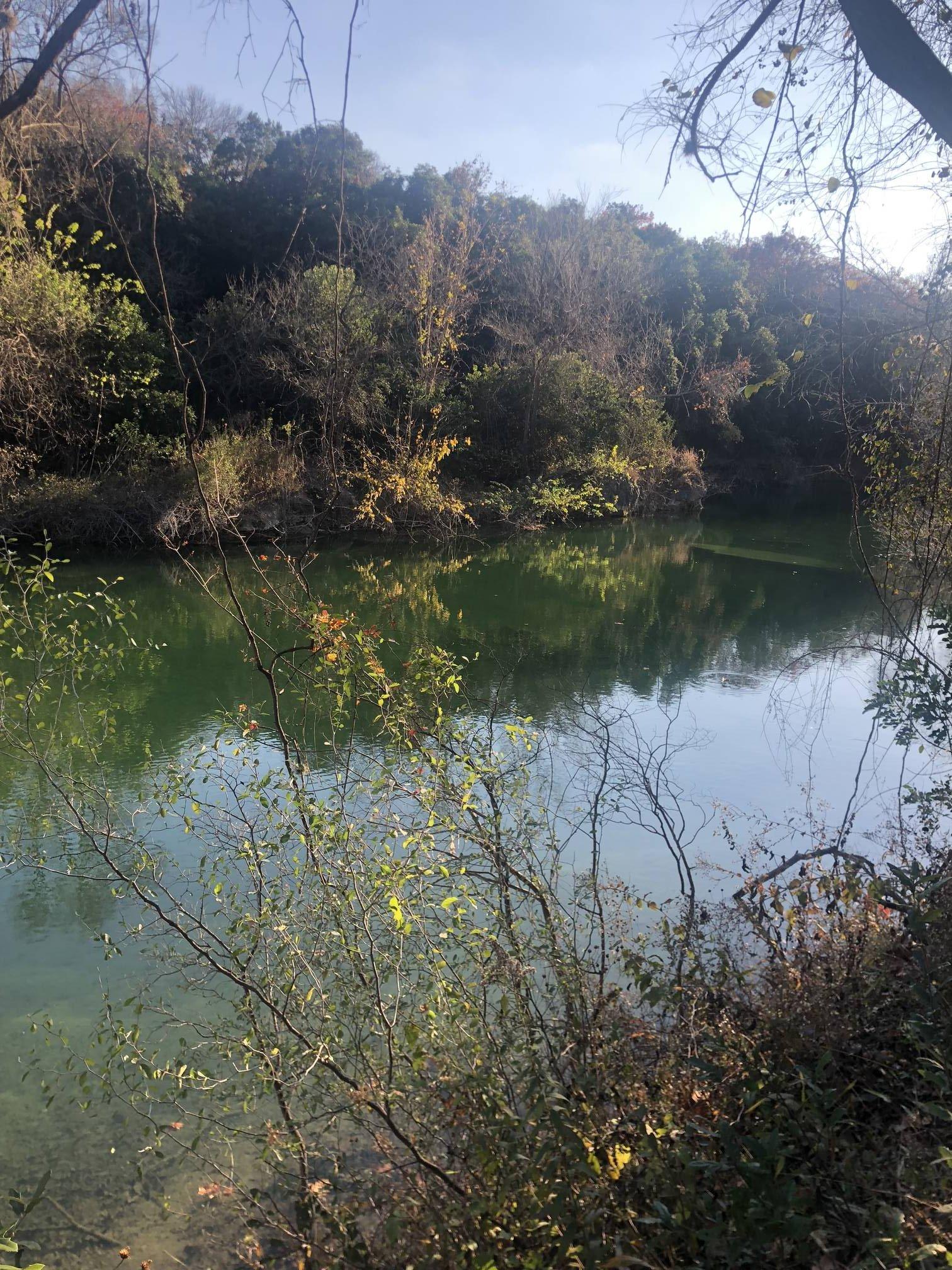 Image of Barton Creek from Barton Creek Trail.
