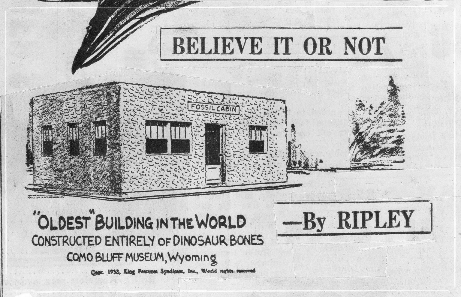 The Fossil Cabin Museum being recognized by Ripley's Believe It or Not.