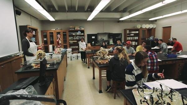 Students participating in lab exercises at the Gaston Science Building in 2018. Source: Gaston Gazette, August 2018.