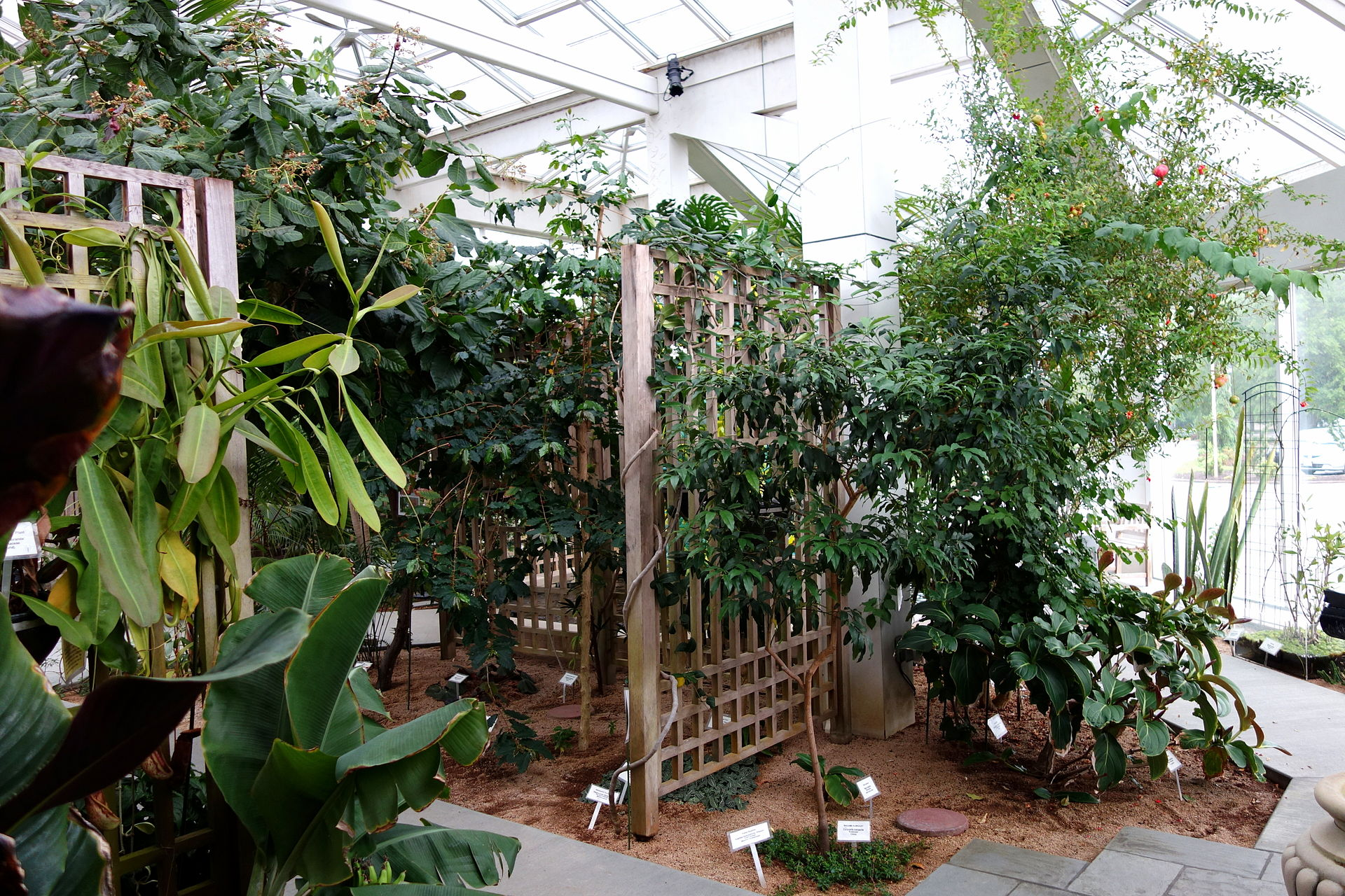 Interior of the conservatory