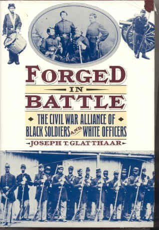Learn more about the relationship between white officers and black soldiers in the war from historian Joseph Glatthaar