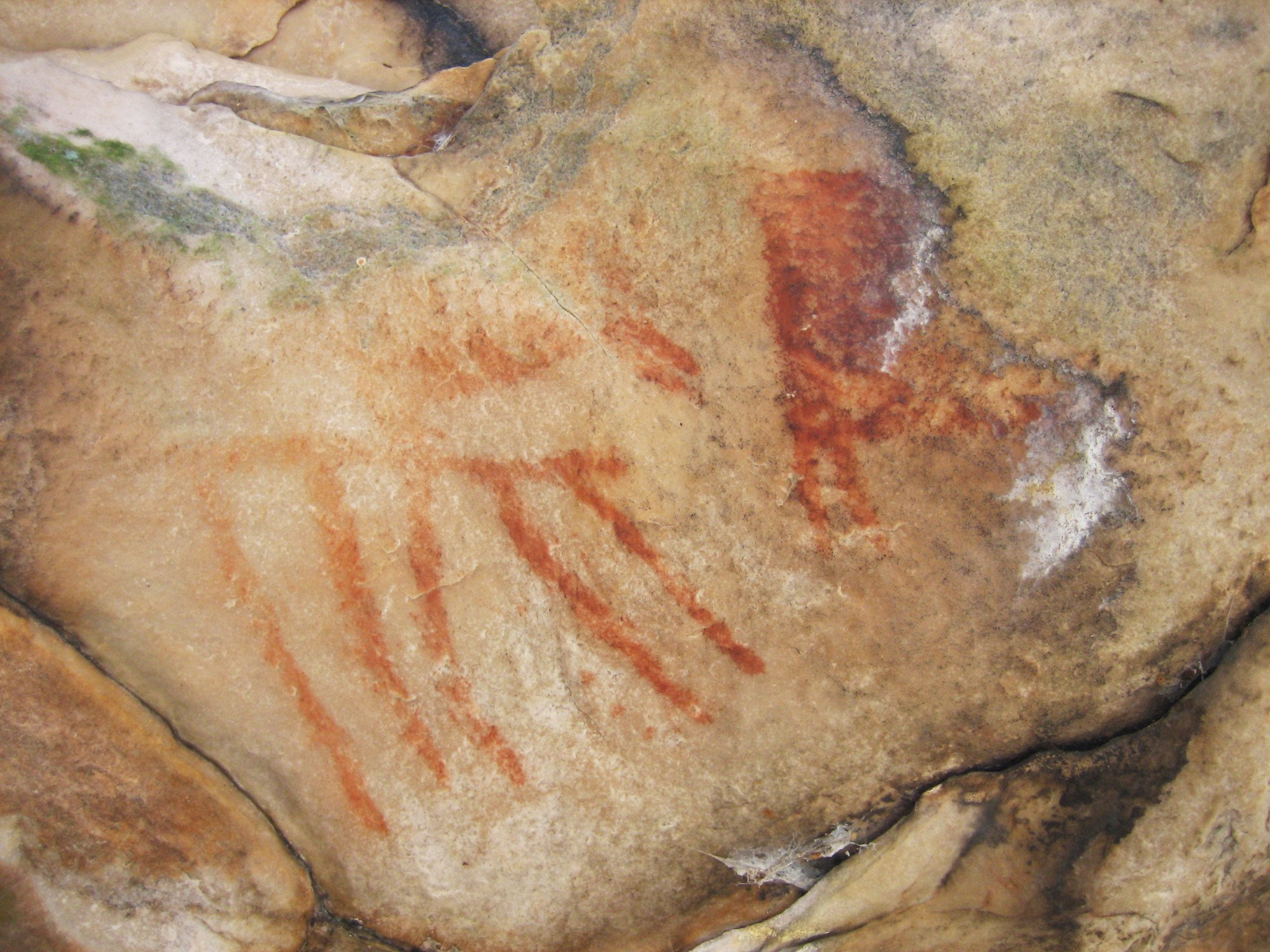 Example of rock art glyphs found at Silver Mound.