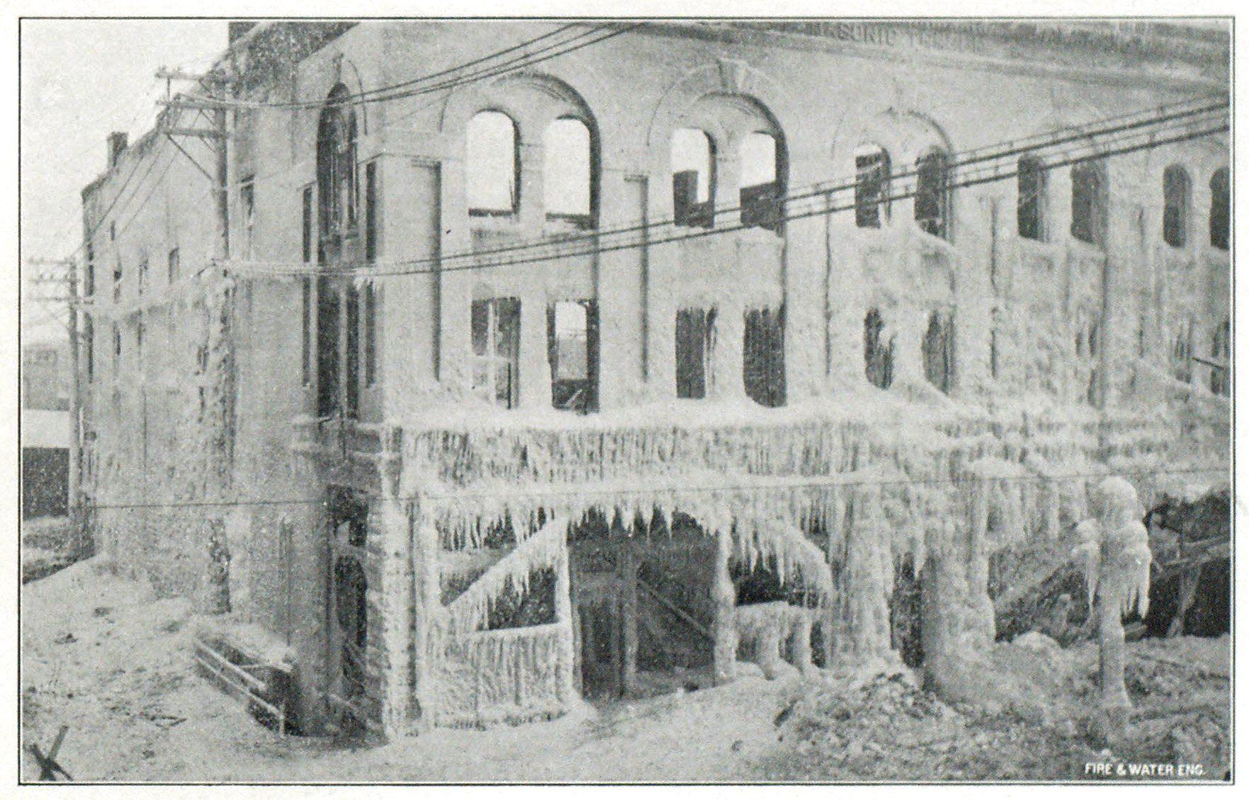 Building, Facade, Monochrome, Plant