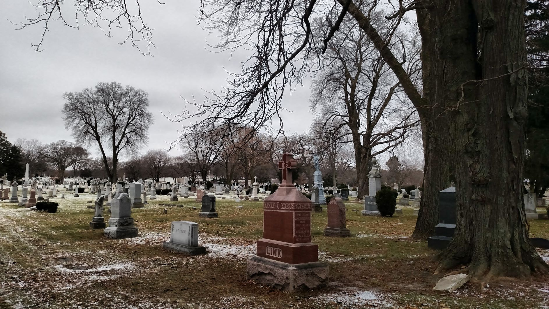 View of the cemetery from Speedway Road. Photo by Peter Wagner