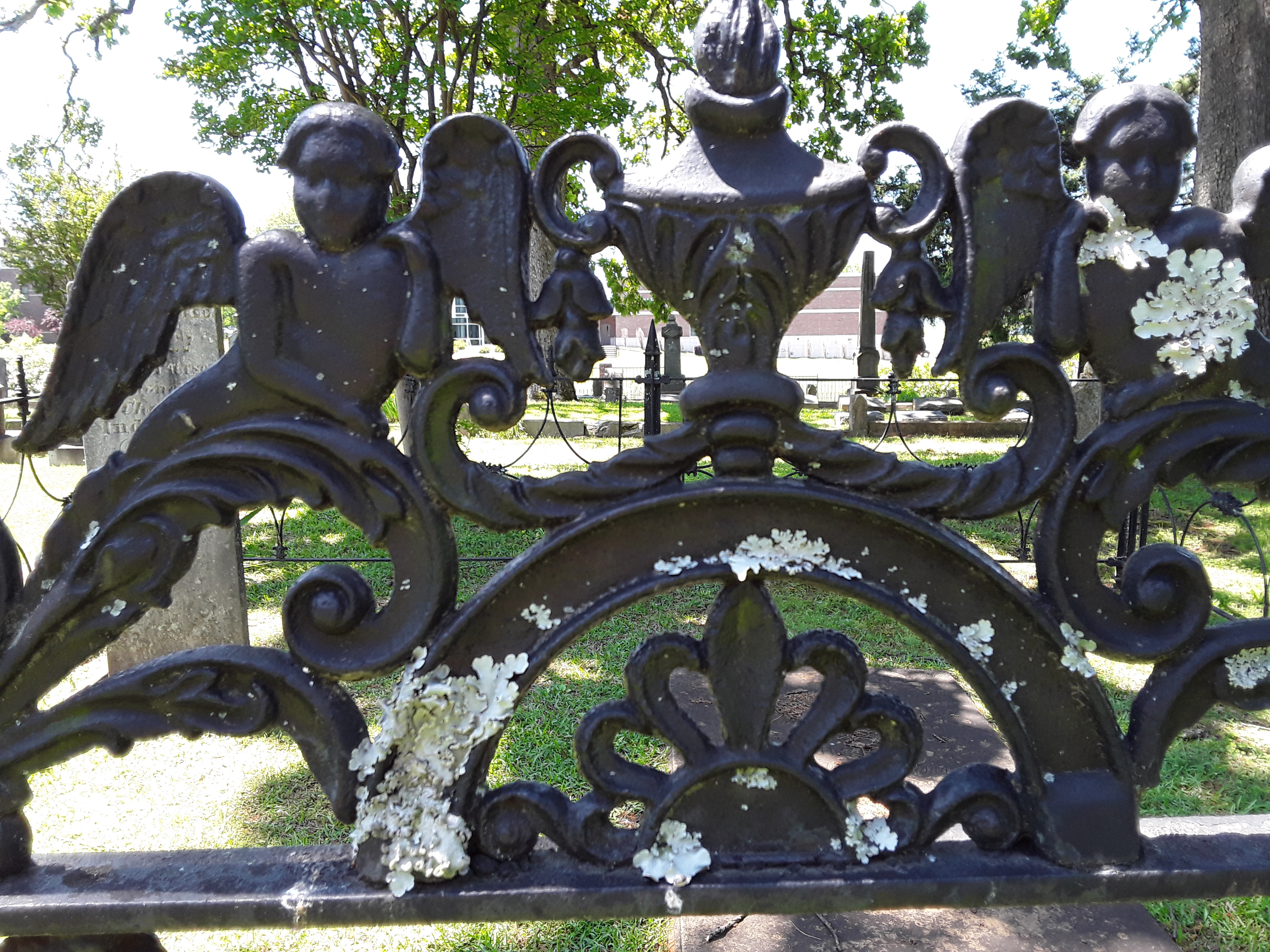 Detail on Wrought Iron Gate in Mount Holly Cemetery