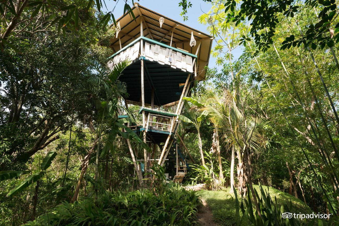 Buda Hooch, the first cabin created by Joe Scheer.