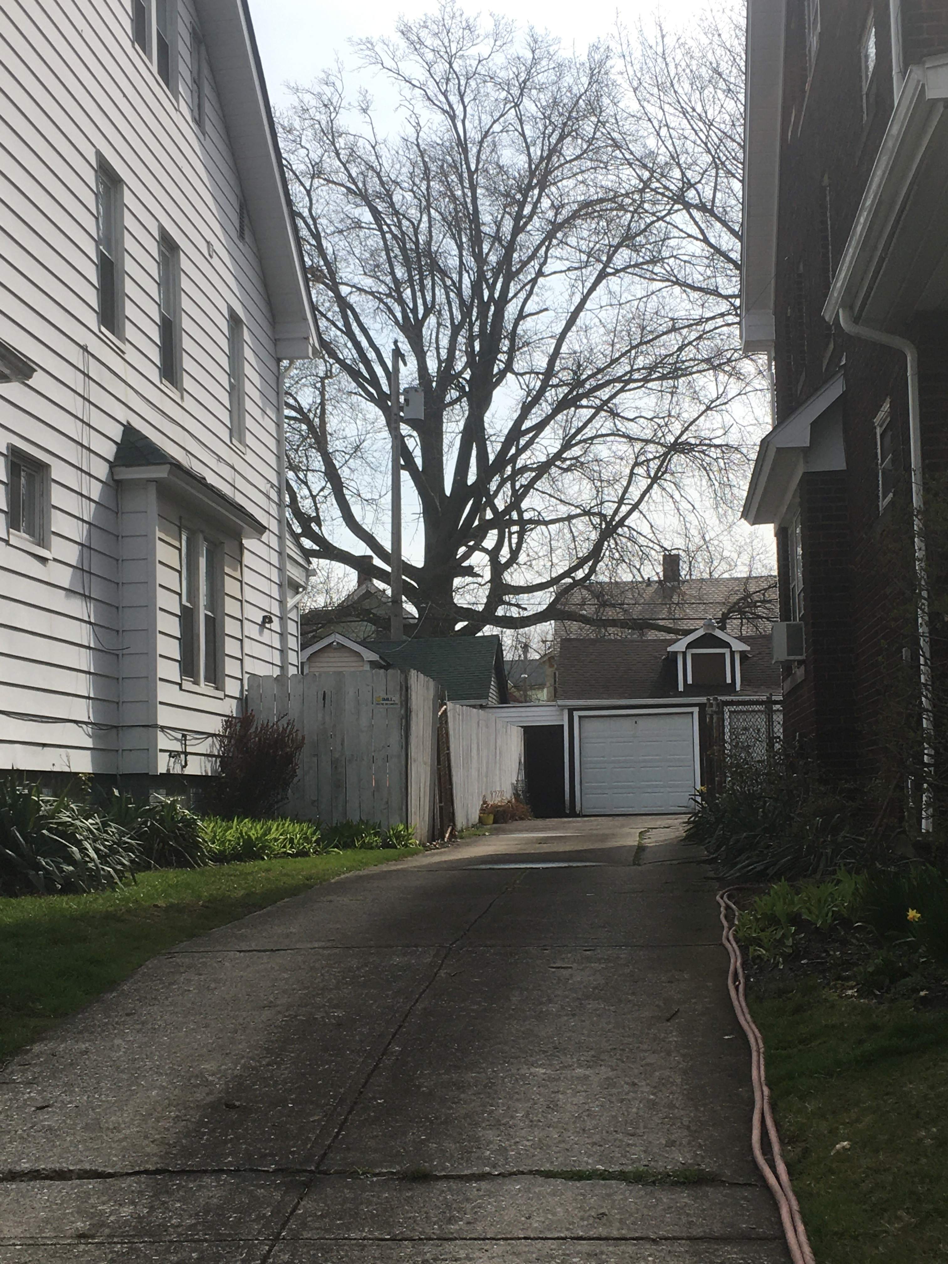 The originally shared driveway between the houses. Note that the garages were originally conjoined.