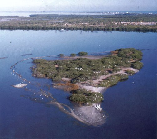 A full look at Pelican Island from above.
