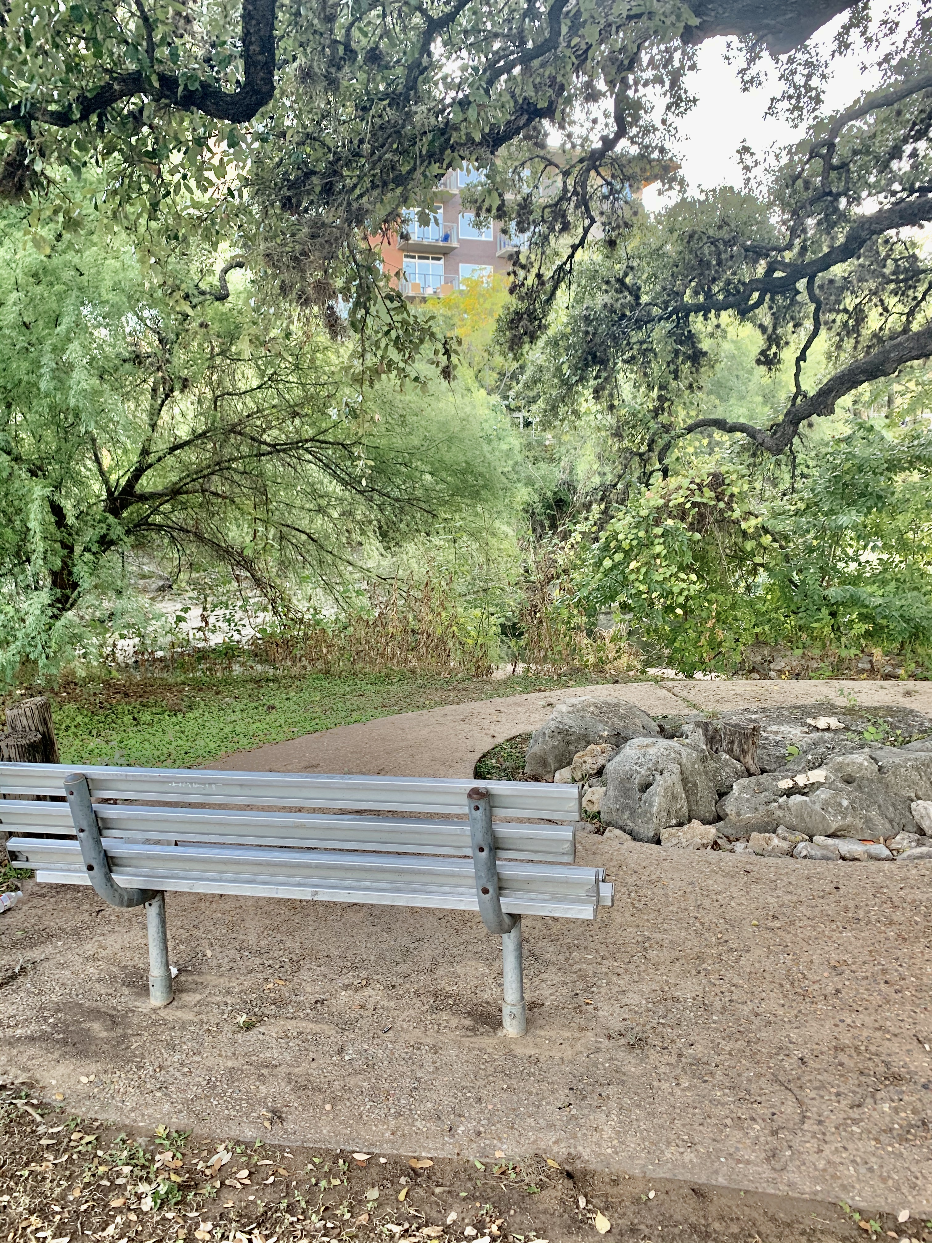 A clearing in the trail with a bench to rest on. (September 2019)