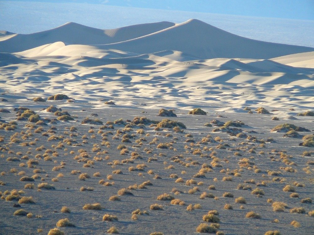 Sand dunes are one of the many natural features in the park.