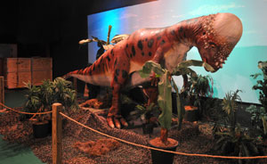 The museum offers displays about dinosaurs and other animals, a simulated rain forest, coal mine, and airplane.