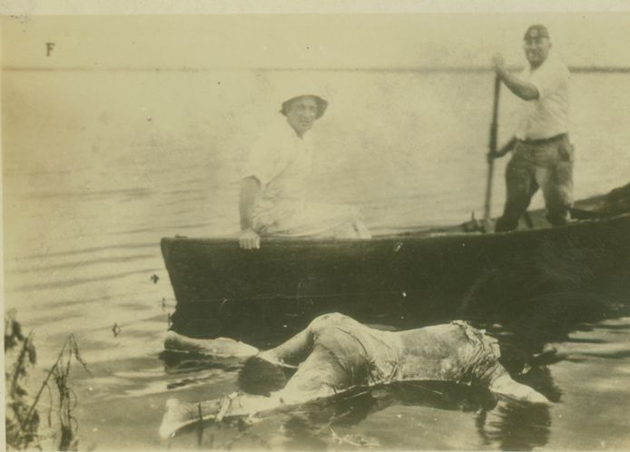 Volunteers recover bodies of victims from one of Florida's many lakes.