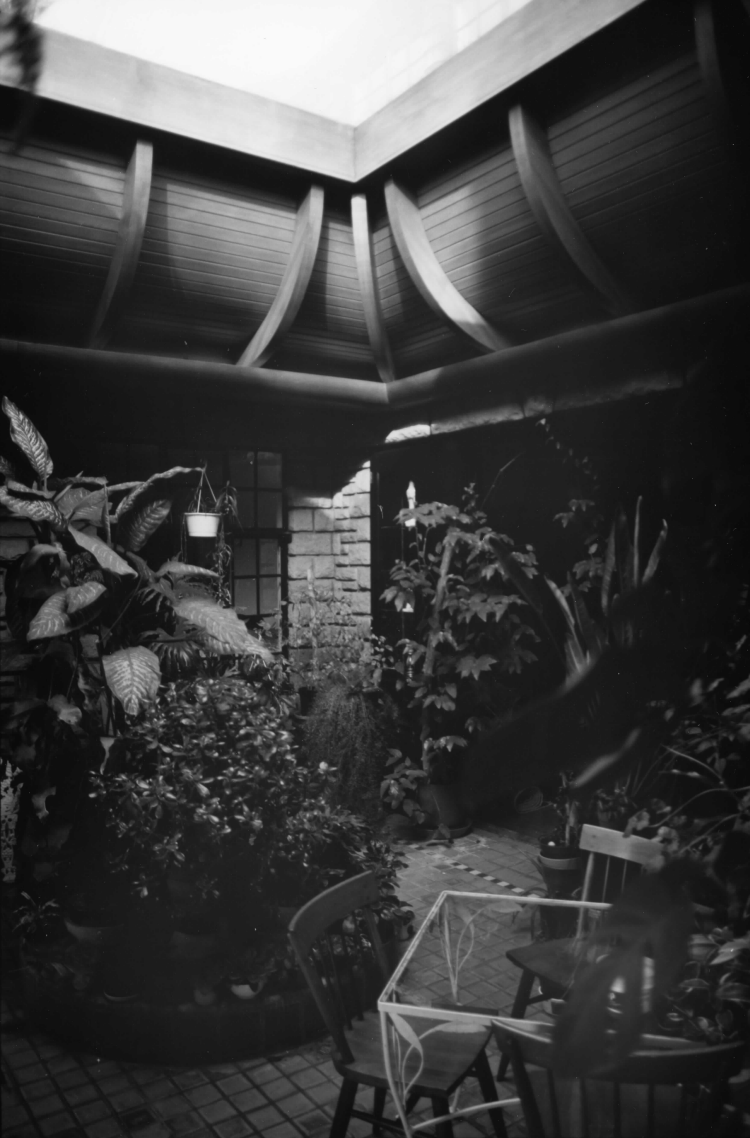 The rear terrace of the house was covered with this skylight in 1966