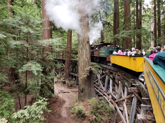 The present-day train winds through the redwoods on a wooden trestle. Norman Clark's route was complicated by wanting to cut down as few redwoods as possible (TripAdvisor).