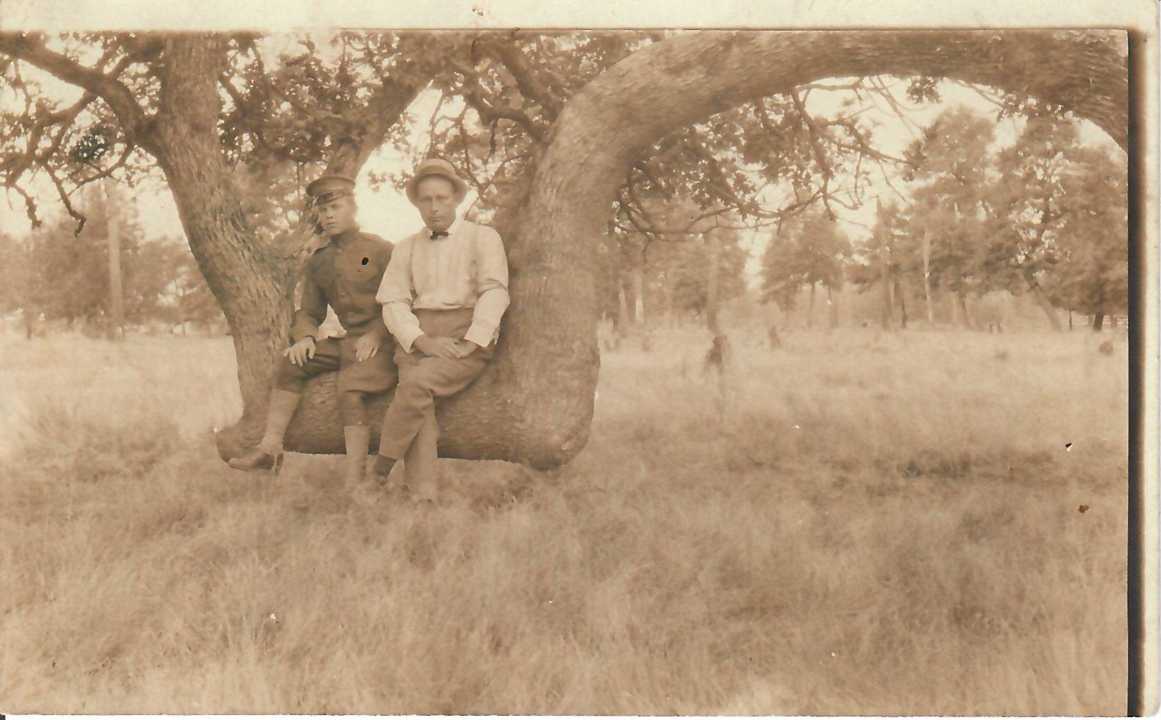 Lovers Oak c1918