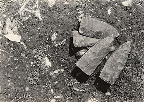 Cache of chipped stone knives from Indian Knoll. Photograph courtesty of William S. Webb Museum of Anthropology.