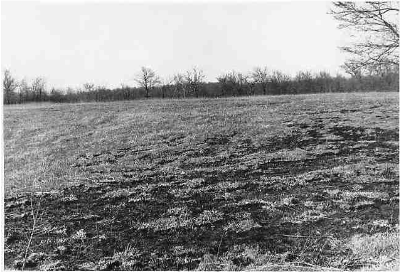 The battlefield at Cabin Creek.