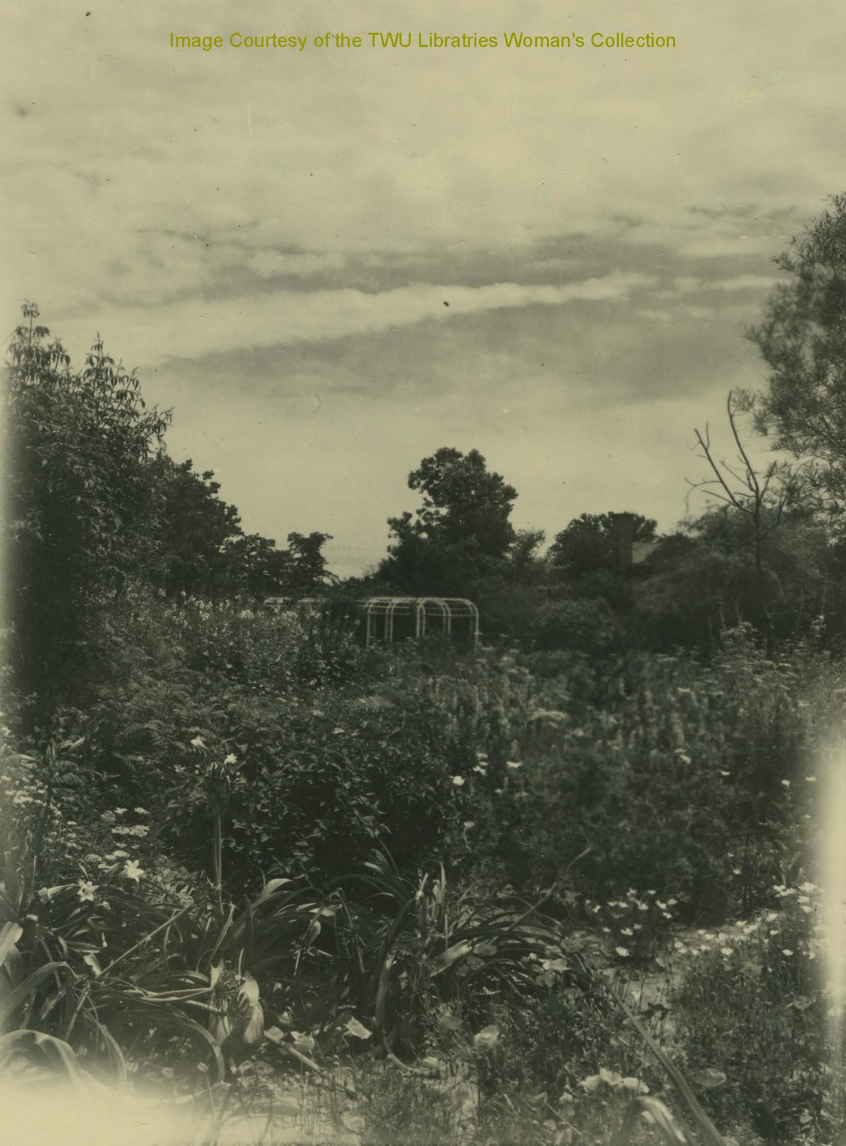 Early Photo of the Botanical Gardens. (Photo: May 1940, Courtesy of the TWU Woman's Collection)