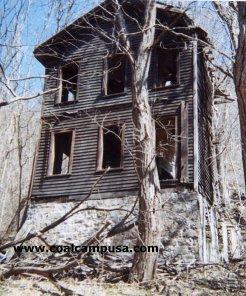 Window, Building, Wood, Twig