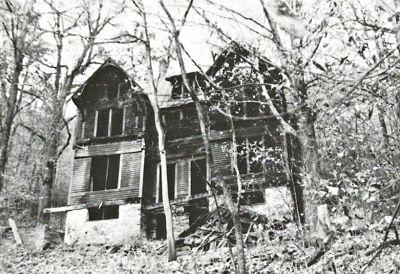 Building, Window, Plant, House