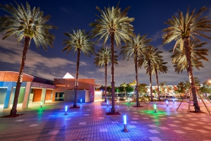 Resort, Palm tree, Lighting, Property
