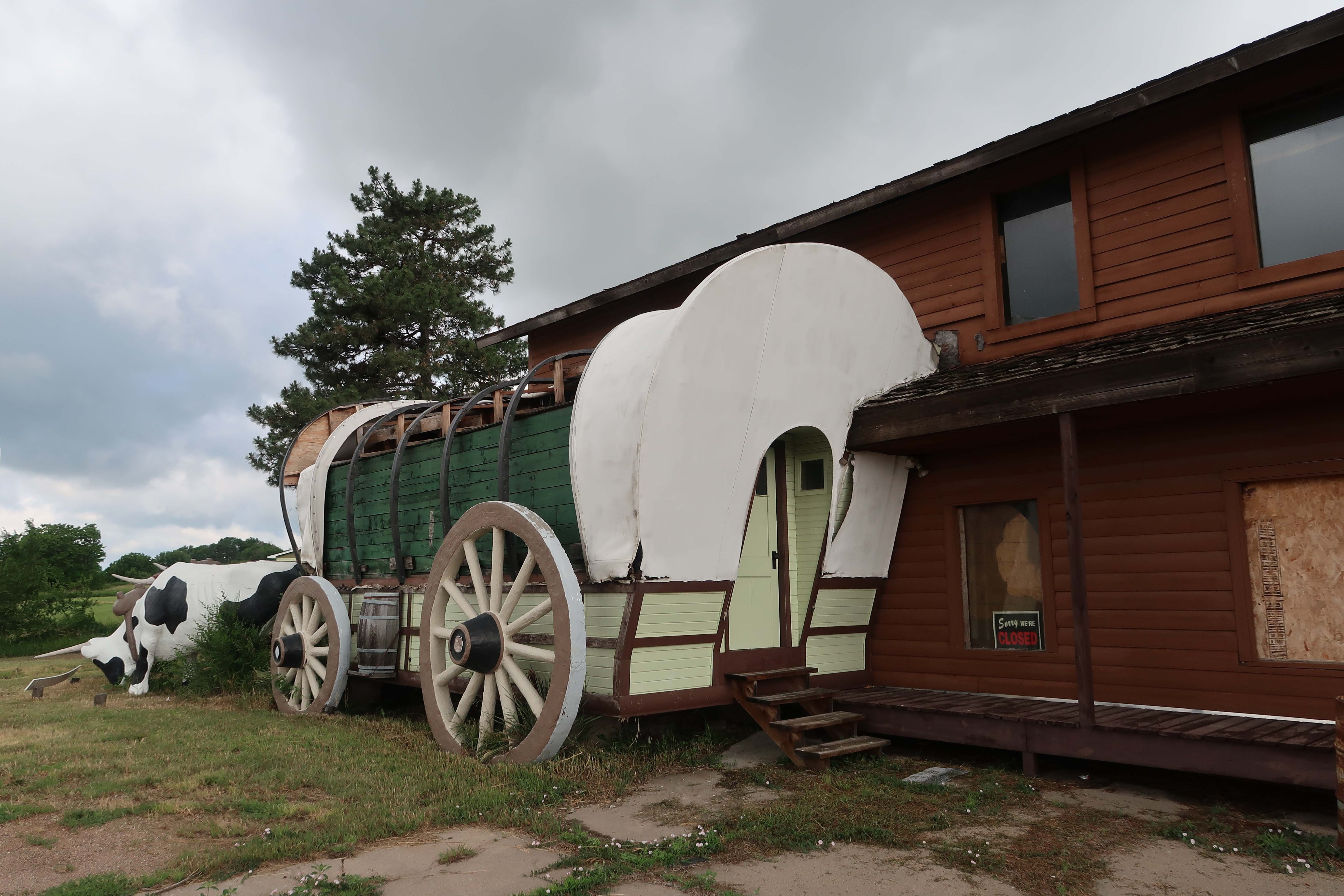 Oxen Pulling a Prairie Schooner.