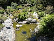 JACCC Japanese garden