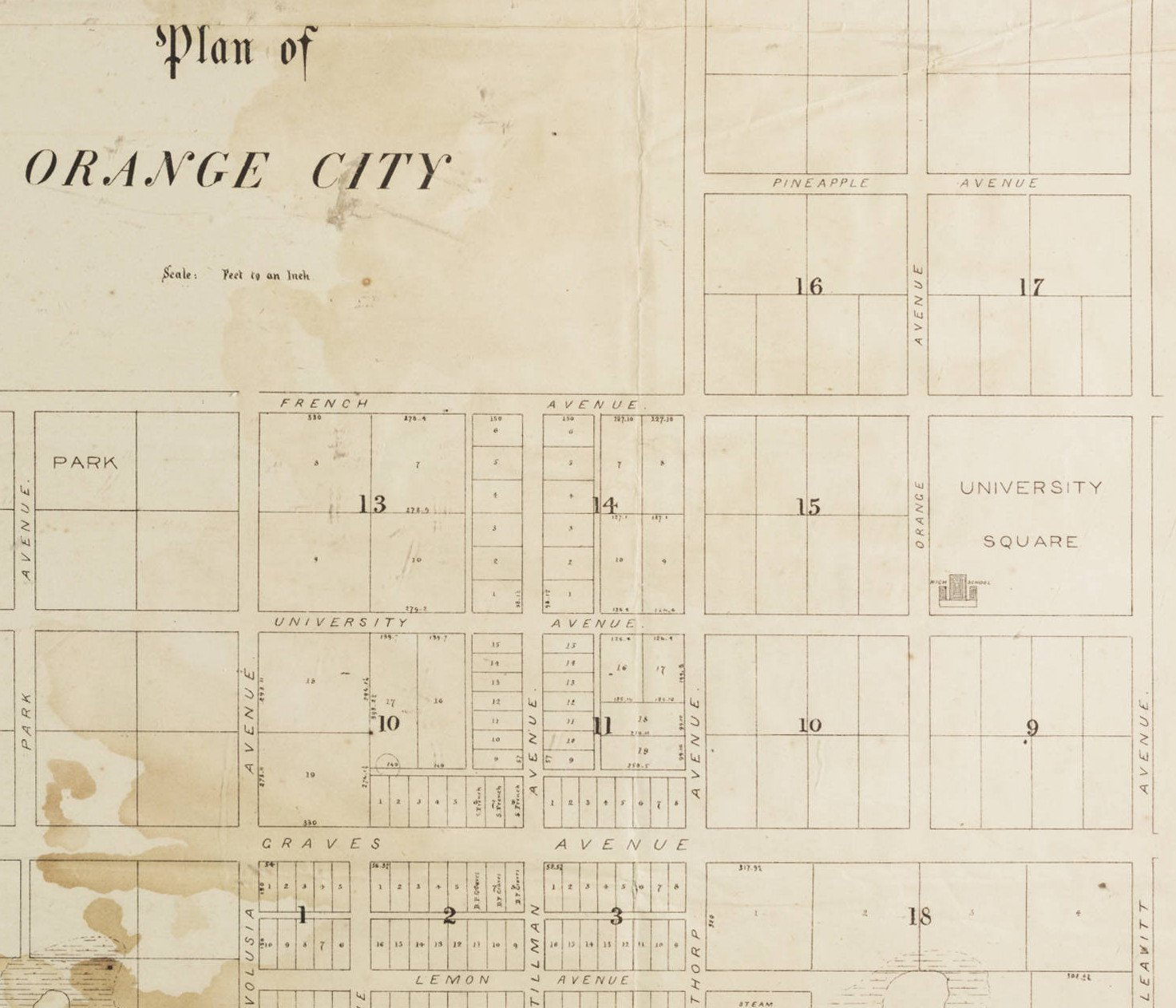 Map and Plan of Orange City, Volusia County, Florida. By Edward R. Trafford, 1877.