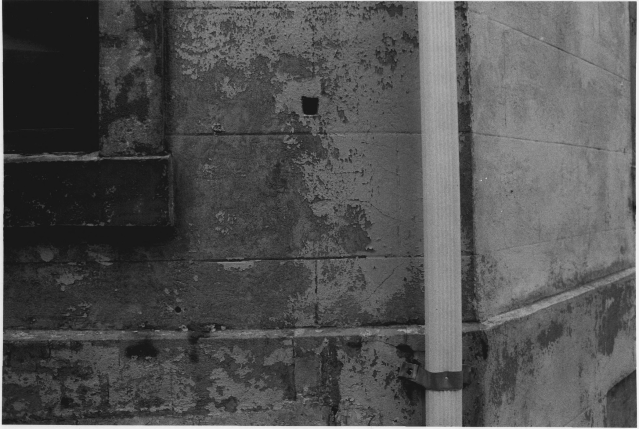 Closeup of the Brickwork on the Octagon House in August of 1979 by Stephen H. Hirschberg