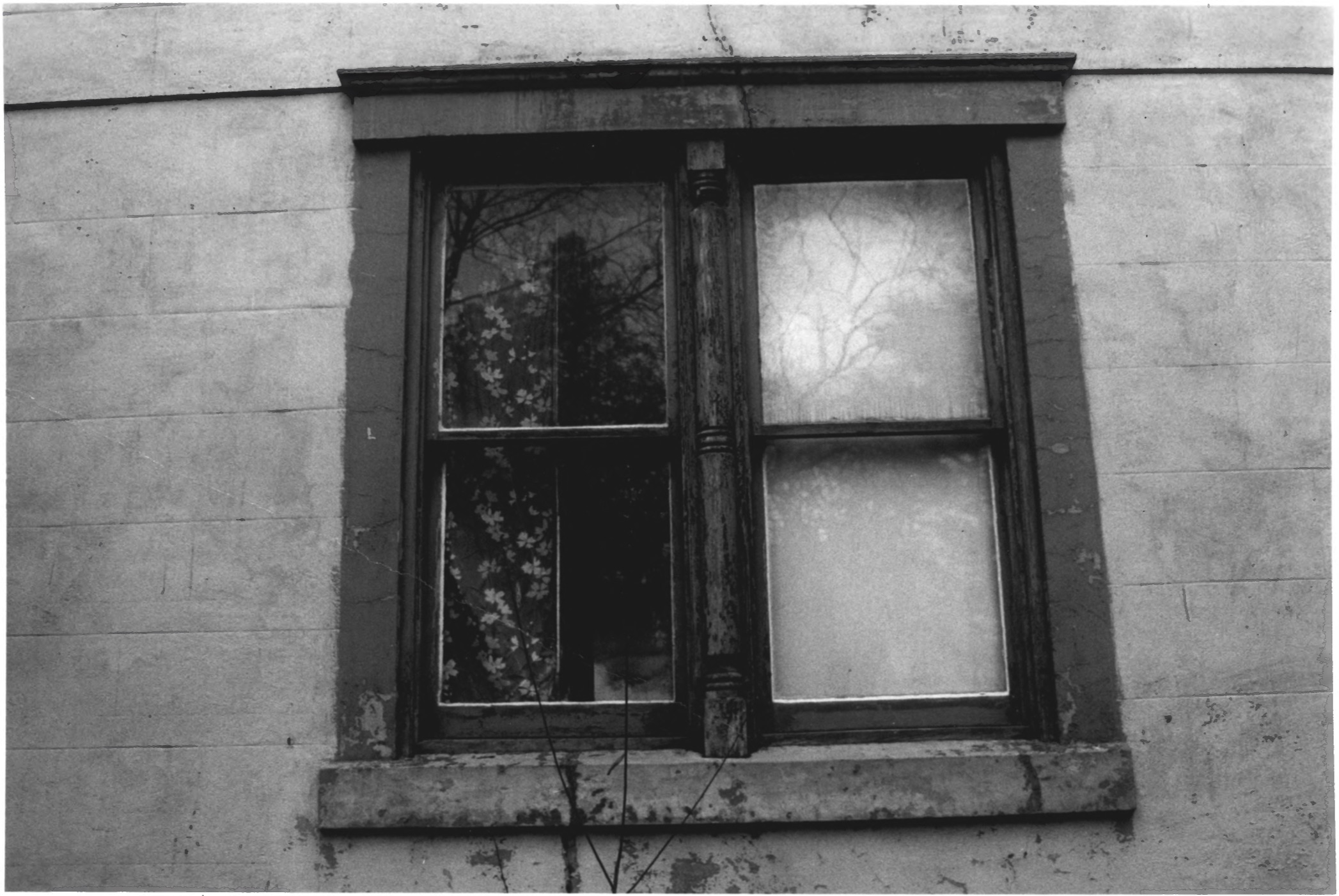 Closeup of Uniquely Crafted Windows on the Octagon House in August of 1979 by Stephen H. Hirschberg