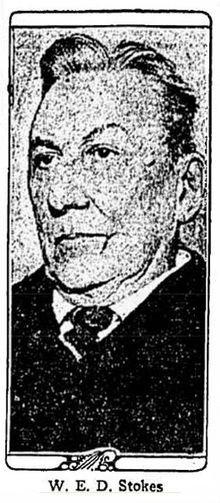 William Earl Dodge Stokes