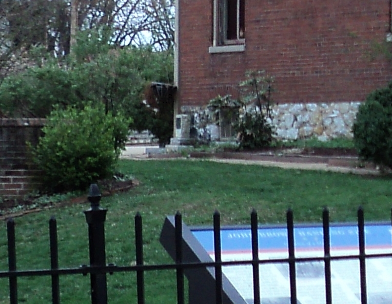 Plant, Property, Window, Building