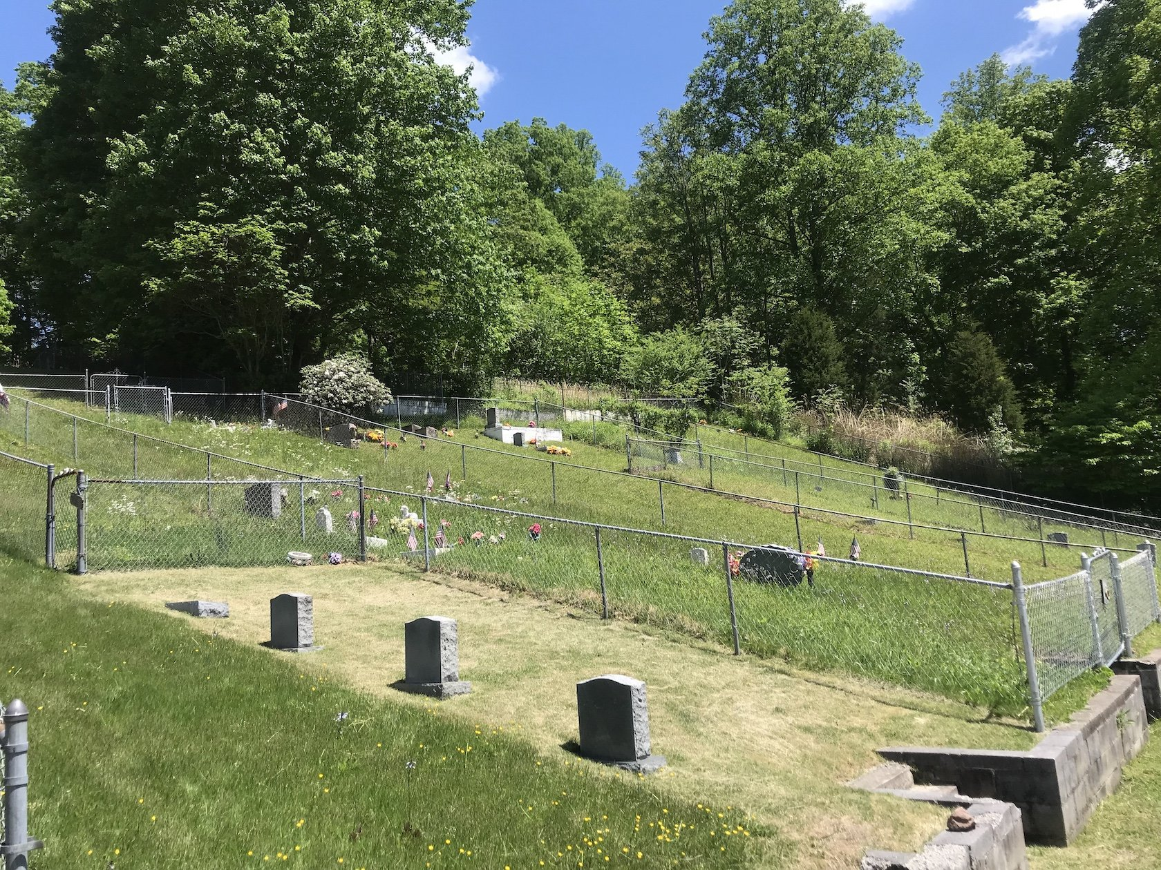 A view of the bottom half of the cemetery.