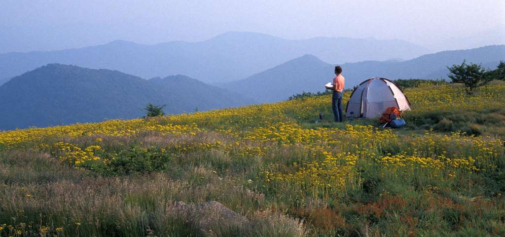 Roan Mountain State Park, Tennessee.