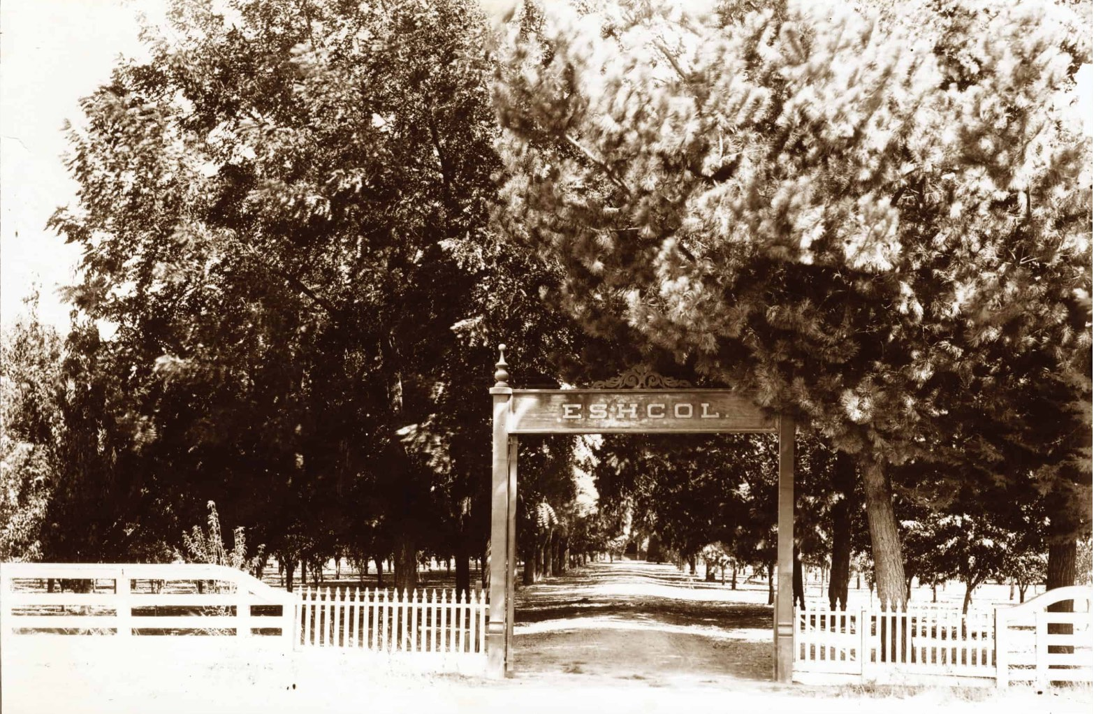 """""""Eschol,"""" the original name of the winery designed by Captain Hamden McIntyre"""
